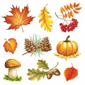 Autumn Items Painted Markers On White Background. You Can Use For Greeting Cards, Posters And Design