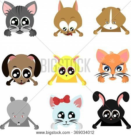 Set Of Pets. Cats And Dogs. Puppies And Kittens. Rabbit, Rat And Hamster. Guinea Pig And Mouse. Big-