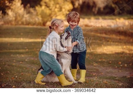 Little Girl And Boy With Pet Dog Exploring Nature Vacation. Children With A Dog Hiking Along The Nat