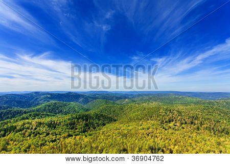 Mountains With Green Forest Landscape