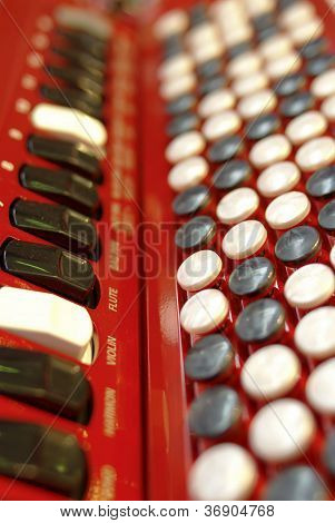 Buttons On An Accordion