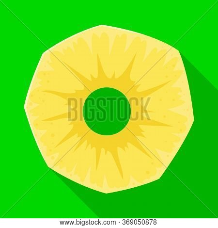 Isolated Object Of Slice And Ananas Symbol. Web Element Of Slice And Round Stock Symbol For Web.