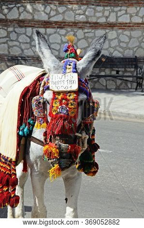 Donkey With Pretty Bridle And A Head Sign (donkey Rides), Mijas, Costa Del Sol, Malaga Province, And