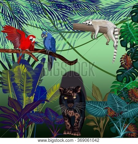 A Night In The Wild Jungle With A Black Panther, A Blue Parrot, A Red Macaw Parrot And A Sleeping Le