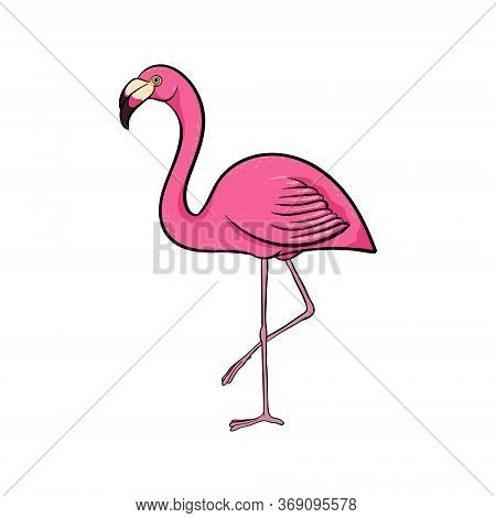 Hand Drawn Cute Cartoon Pink Flamingo Stay On One Leg, Colorful Sketch Style Vector Illustration Iso
