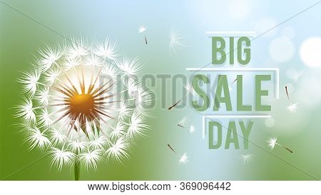 Sale Day Banner. Season Discount Flyer With Realistic Dandelion Flower And Flying Fluffy Seeds Vecto
