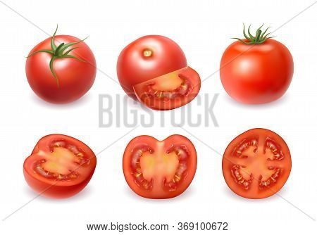 Realistic Detailed 3d Fresh Whole, Half And Pieces Red Tomatoes Set For Salad And Sauce. Vector Illu