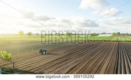 A Tractor Rides On A Farm Field. Farmer On A Tractor With Milling Machine Loosens, Grinds And Mixes