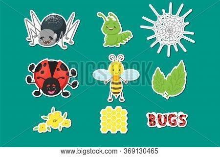 Bug Or Insect Set. Spider, Caterpillar Or Worm, Ladybird, Bee Or Wasp, Leaves, Flowers, Honeycomb, D