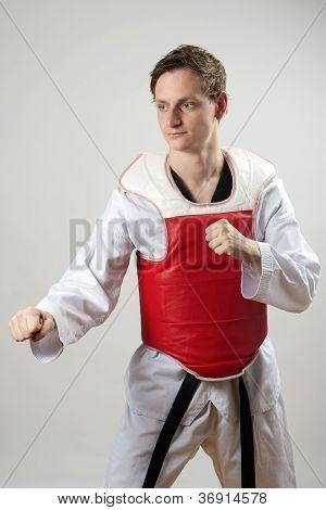 Taekwon-do Fighter