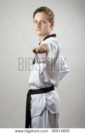 Taekwon-do Hand Technique