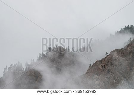 Ghostly View Through Dense Fog To Beautiful Rockies. Low Clouds Among Giant Rocky Mountains With Tre