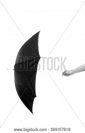 Vertical Shot Of A Hand Holding A Black Colored Parasol Over A White Colored Background.