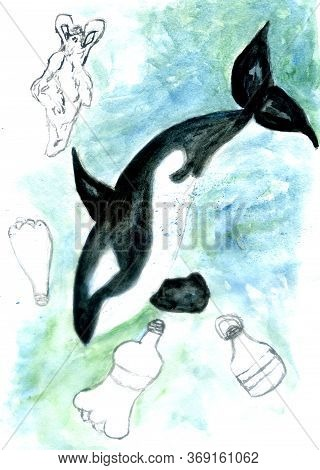 Orca And Plastic Bottle