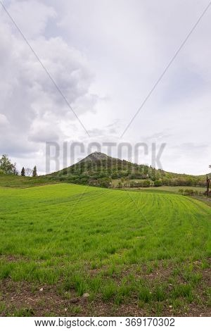 Green Mixed Forest On Milesovka, Highest Mountain Of Ceske Stredohori With Lookout Tower And Meteoro