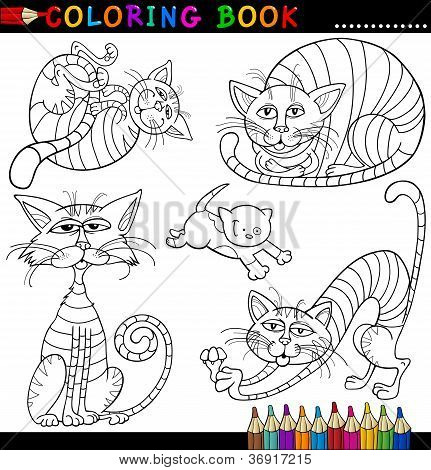 poster of Coloring Book or Page Cartoon Illustration of Funny Cats for Children