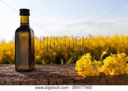 Oil Bottle On The Background Of Oilseed Rape. Olive On A Wooden Table - Organic Product.