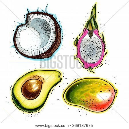 Stylized Hand-draw Tropical Set Of Fruits Isolated On A White Background. Avocado, Coconut, Pitahaya