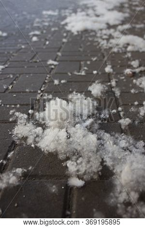 Poplar Fluff Laying On Street Pavement In A Big City. Poplar Fluff Is Not To Blame For Allergies, Su