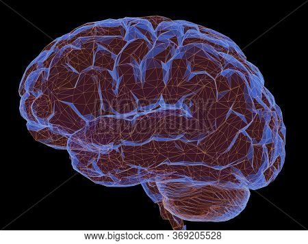 3d Illustration. Human Brain In A Structure Of Polygonal Connections Representing The Power Of The M