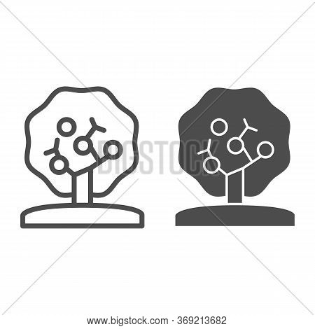 Apple Tree Line And Solid Icon, Nature Concept, Tree Silhouette Sign On White Background, Apple Tree