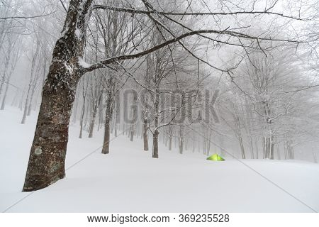 winter camp in snow forest of Nebrodi Mountains natural landmark in Sicily travel adventure wild outdoor