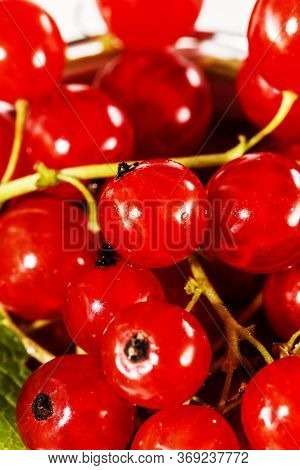 Juicy Currant. Fresh Red Currant , Background Of Fresh Currant. Various Fresh Summer Berry, Close Up