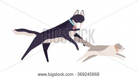 Cute Cat Running Away From Funny Dog Vector Flat Illustration. Two Domestic Animal Friends Playing T