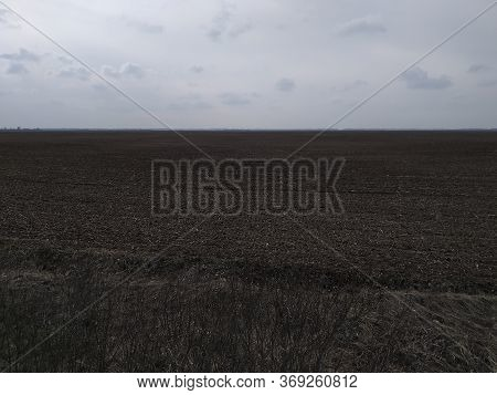 Gloomy Agricultural Field After Harvesting Corn. Overcast Landscape.