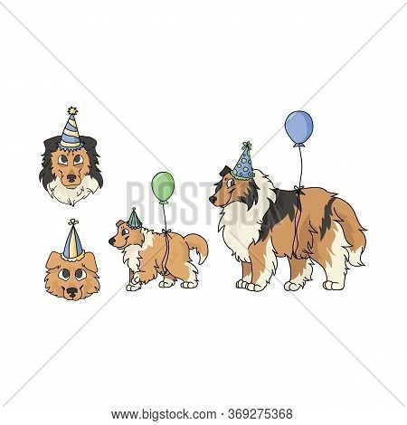 Cute Cartoon Rough Collie Dog Party Set Vector Clipart. Pedigree Kennel Sheepdog For Dog Lovers. Pur