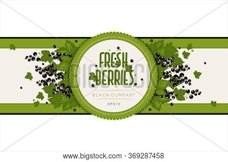 Label Design For Jam Or Berries. Blackcurrant Berries And Leaves. Packaging, Box Template. Farm Prod