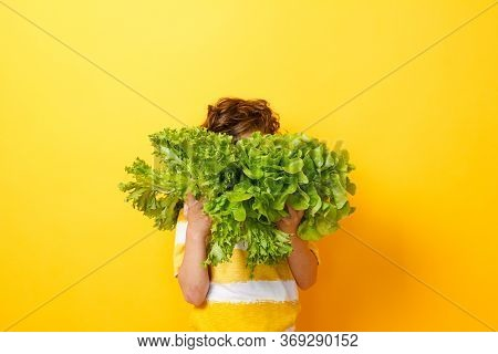 Portrait Of Little Boy Standing Isolated On Yellow Background And Enjoying Delicious Lettuce While H