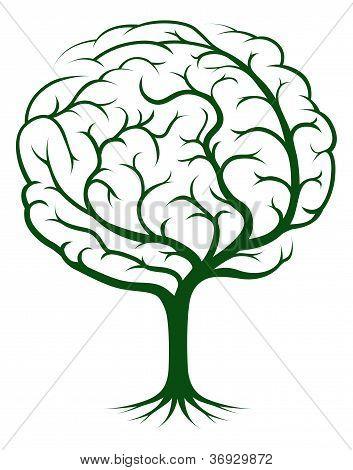 Brain Tree Illustration