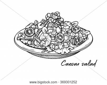 Caesar Salad With Shrimp Isolated On A White Background. Sketch Italian Dishes. Vector Illustration