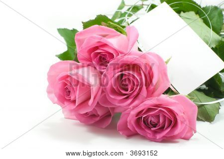 Five Pink Roses With Blank Card 1