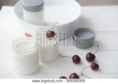 Homemade Organic Yogurt In Glass Jars In Yogurt Maker. Automatic Yogurt Machine To Make Fermented Mi
