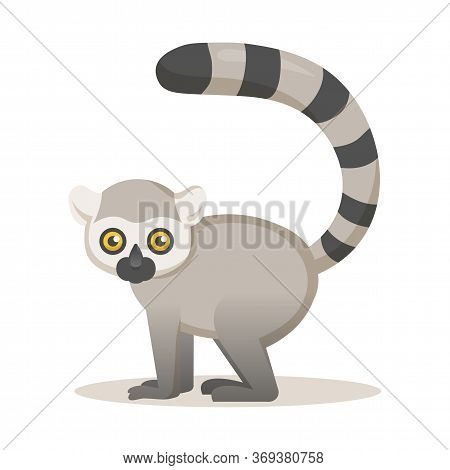Cute African Lemur. Flat Vector Illustration, Isolated On White Background.