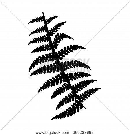 Fern Branch In Simple Style Black Silhouette