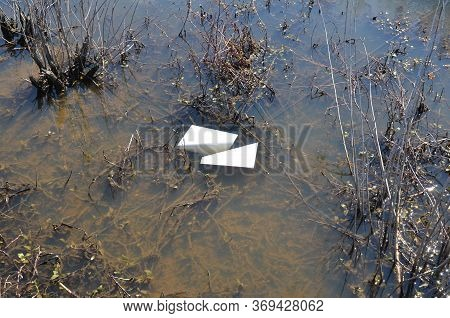 Paper In Muddy Water With Algae And Plants