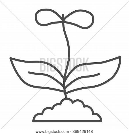 Flower With Two Petals Thin Line Icon, Floral Concept, Spring Flower Blossom Sign On White Backgroun