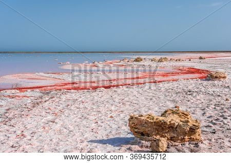 Brine And Salt Of A Pink Lake Koyash Colored By Microalgae Dunaliella Salina, Famous For Its Antioxi