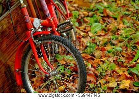 Old Bicycle In The Garden In Autumn, Russia
