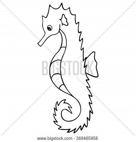 Sea Horse. Needle-shaped Fish. Master Of Disguise. Vector Illustration. Outline On A White Isolated