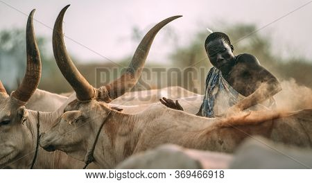Mundari Tribe, South Sudan - March 11, 2020: Man From Mundari Tribe Throwing Handful Of Ashes On Bac