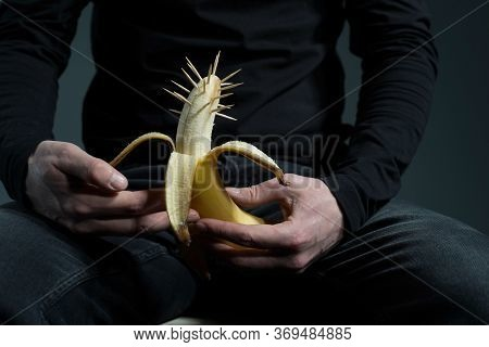 Sexually Transmitted Diseases Concept. A Man In Black With A Prickly Banana In His Hand, On A Gray B