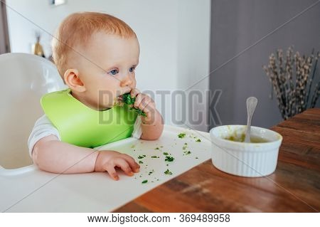 Baby Girl Eating Broccoli By Herself At Dining Table. Little Child Sitting On Highchair At Bowl With