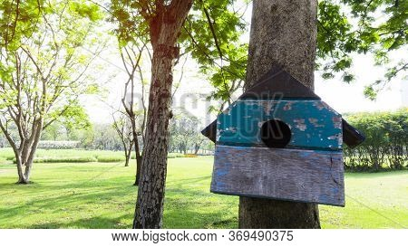 A Blue Color Wooden Squirrel\'s House Dwelling, Hanging On The Tree In The Public Park, Green Lawn O