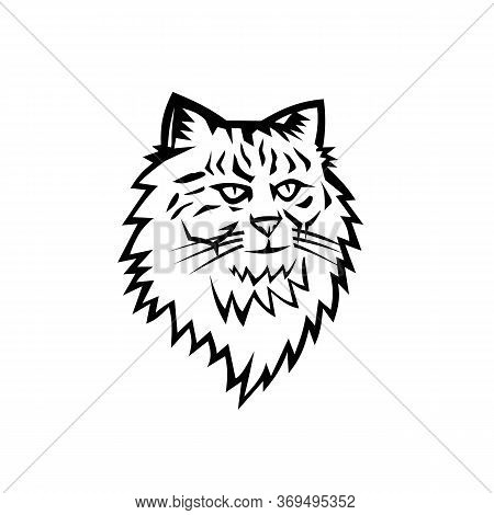 Black And White Illustration Of Head Of A Siberian Forest Cat, Moscow Semi-longhair, Or Neva Masquer