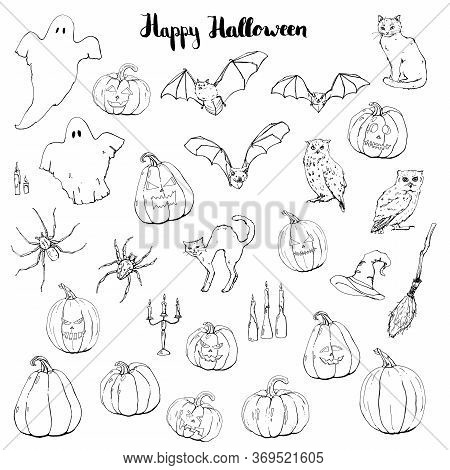 Hand Drawn Graphic Halloween Set With Ghost Bat Black Cat Owl Spider Witch Hat Broom Besom Candle An