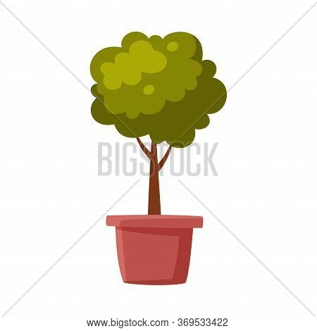 Miniature Tree In Flowerpot, Green Potted Plant Flat Style Vector Illustration On White Background